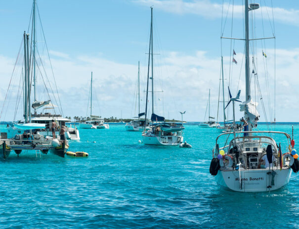 adventurer - sailing - caribbean-62